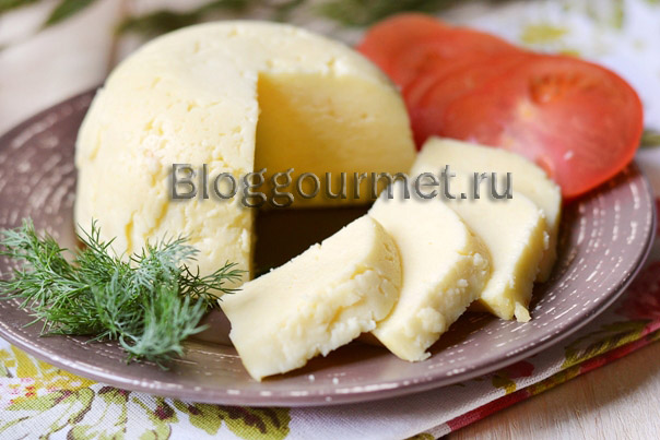 домашний сыр из творога и молока